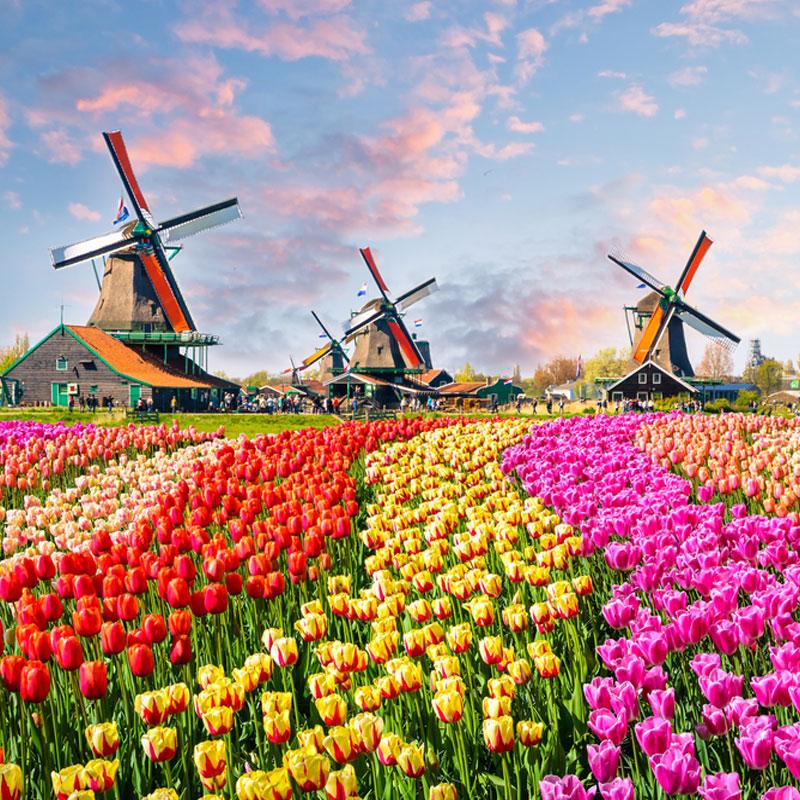 viajes fin de curso en Holanda