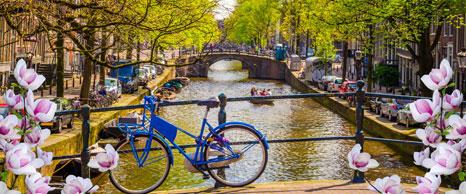 viaje de estudiantes a amsterdam y berlin