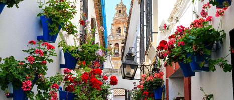Fin de curso en Sevilla