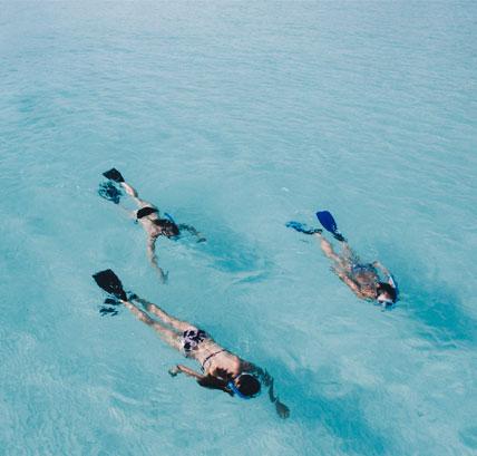 snorkel viaje de estudios